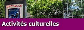 cultureanimations