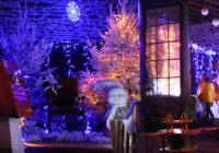 Vidéo. Découvrez la maison du père Noël (parc de la Chalotais)
