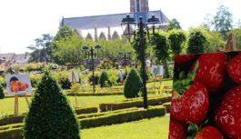 Vidéo – Découvrez le parc de Bourgchevreuil