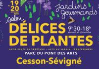 Salon Délices de Plantes – 19 et 20 septembre 2020