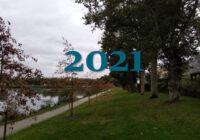 Le plan de gestion de l'arbre 2020-2021 à télécharger