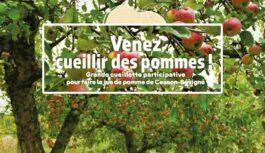 Venez cueillir des pommes samedi 16 octobre à la Grande Isle