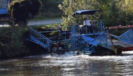 Nouvelle opération de faucardage pour nettoyer la Vilaine des plantes invasives